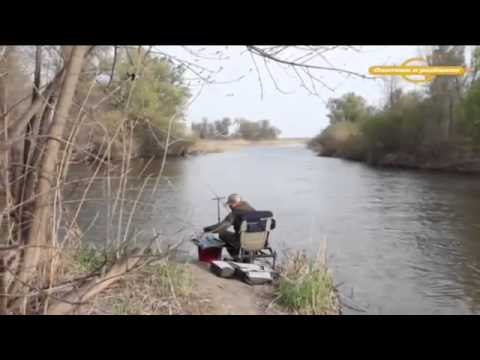 Весенний фидер на малых реках Английская донка с Алексеем Фадеевым ...