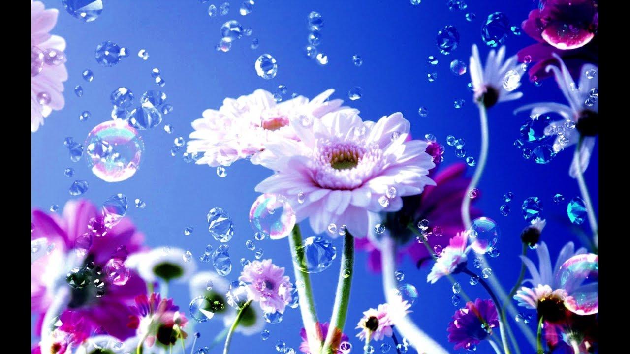 Çiçekle Suyun Aşkı Hikayesi