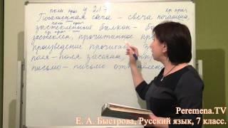 Peremena TV Русский язык, Быстрова, № 217