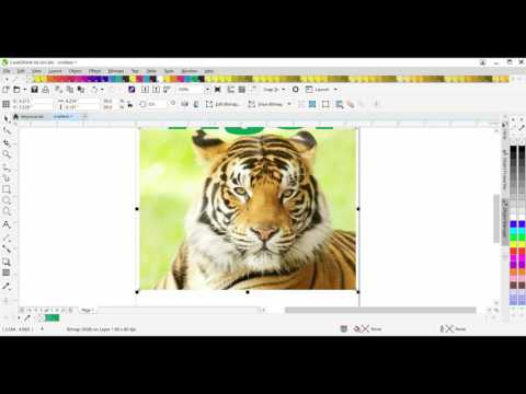 How to do CMYK 4 Color Process In Coreldraw