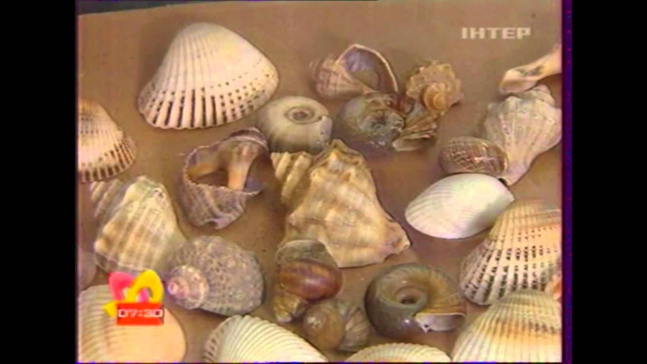 Морское панно своими руками фото 343