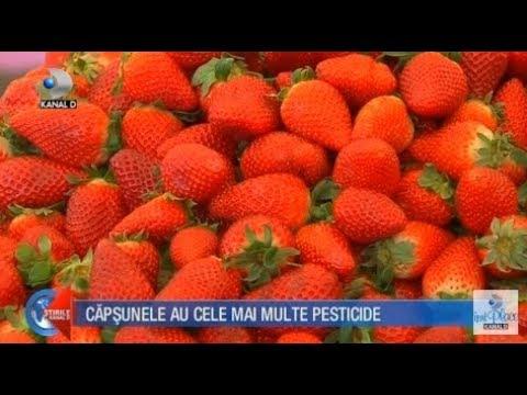 Stirile Kanal D (13.04.2018) - Capsunele au cele mai multe pesticide! Editie COMPLETA