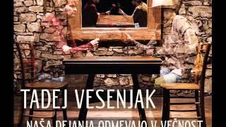 Tadej Vesenjak - Naša dejanja odmevajo v večnost (2014)