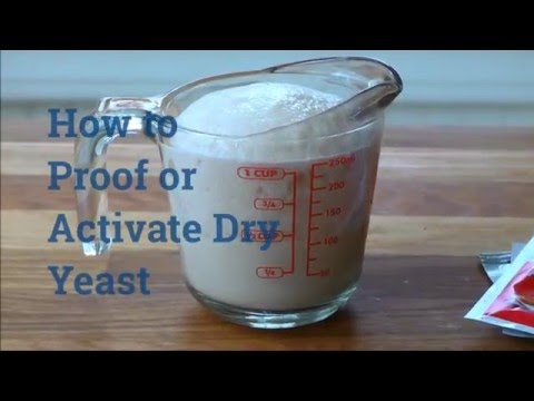 activating dry brewers yeast