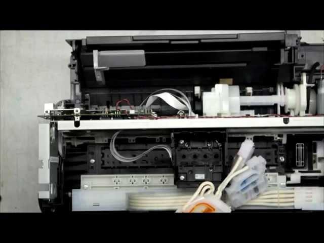 Драйверы для принтеров Epson L110 / L300 - [скачать]
