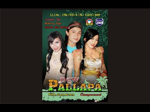 lilin-herlina-&-agung---new-pallapa---nagih-janji-[-official-]