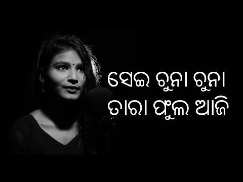 Moods & Melodies - SEI CHUNA CHUNA TARA PHULA - Cover - Abhipsha Das