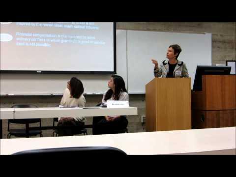 YCC - Judicialization of SER in Brazil - Vanice Regina Lirio do Valle