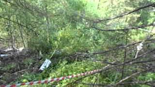 Обломки самолета Подосиновский район Кировской области(, 2014-08-11T14:09:39.000Z)