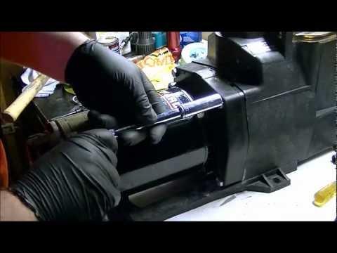 Hayward Super Pump Seal Replacement Youtube