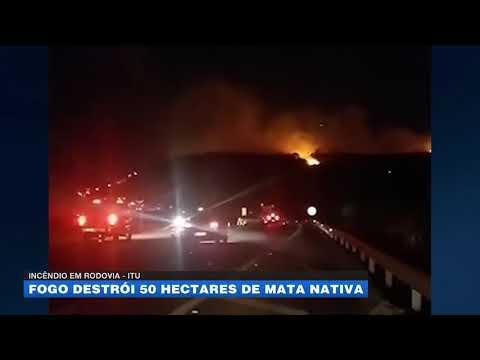 Incêndio em rodovia: fogo destrói 50 hectares de mata nativa