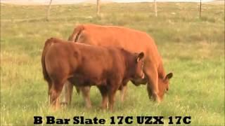 B Bar Slate 17C UZX 17C August 2015
