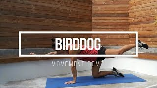 Birddog // FIT Happy Hour Movement Demo