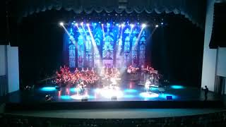 Metallica - Mama said. Tribute with symphony orchestra.