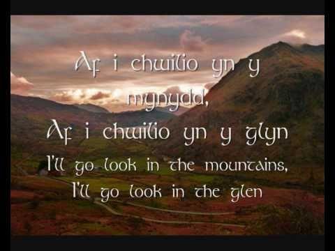Yma O Hyd lyrics by Dafydd Iwan, 1 meaning. Yma O Hyd ...