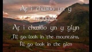 Mae Hiraeth yn Fy Nghalon - Dafydd Iwan (geiriau / lyrics)