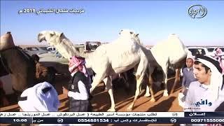 البث المباشر   قناة الصحراء