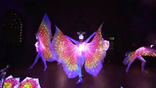 Future Butterflies, LED Isis Wings Tanzshowact - presented by Sugar Office