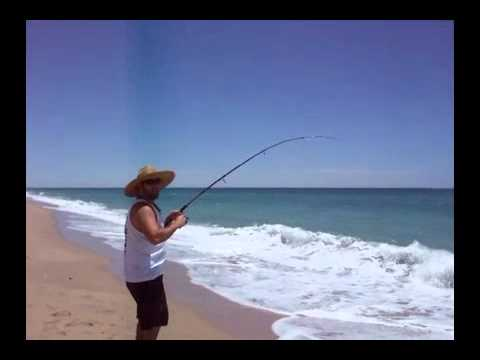 Surf Fishing For Corvina In Rocky Point, Mexico