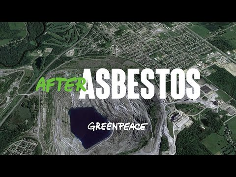 after-asbestos-|-turning-a-city's-toxic-name-into-a-symbol-of-biodiversity
