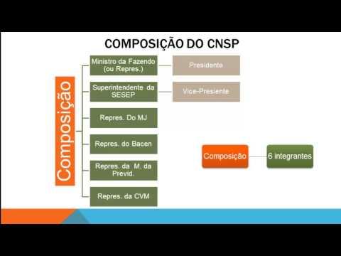 1. Órgãos Normativos (CMN, CNSP e CNPC)