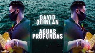 David Quinlan-Águas Profundas Linha de Baixo de WillianBASS Resimi