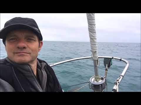 Sailing Vessel Largo 2017, Dolphins, Offshore sailing, Inshore Carrick rds