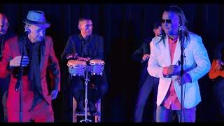 Andy Andy y Luis Segura - Tontos y Locos (Video Oficial)