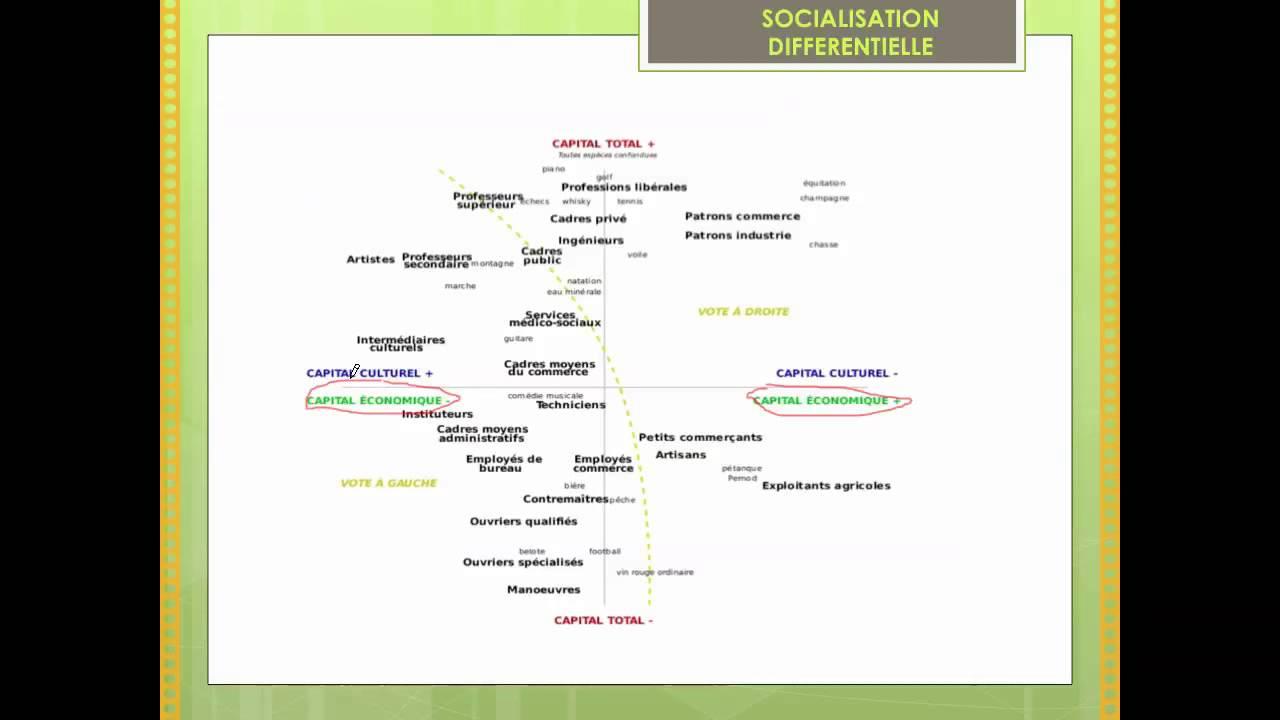 Buy botany dissertation chapter