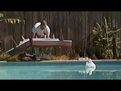 Dog Sinks Titanic