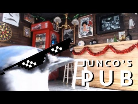 Junco's Pub: Interview on the CBC St. John's Morning Show
