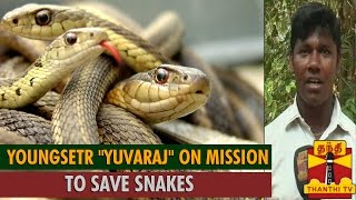 Youngster Yuvaraj On Mission To Save Snakes ... Thanthi TV