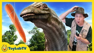 DINOSAUR RESCUE CHALLENGE & LION ATTACK! Family Fun Real Life Jurassic Adventure w/ Nerf Kids Toys