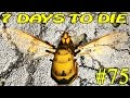 7 Days To Die Alpha 15 Беспорядок 75 16 mp3