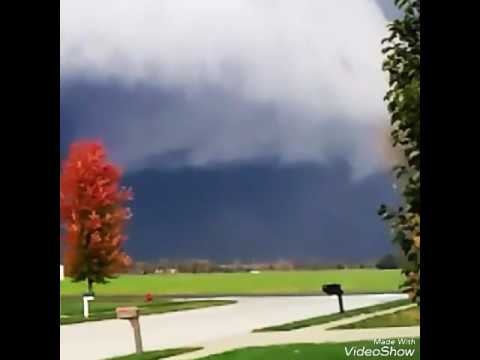 Williamsville Illinois Weather