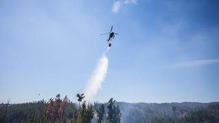 Пожарные погибли при тушении лесных пожаров в Чили (новости)