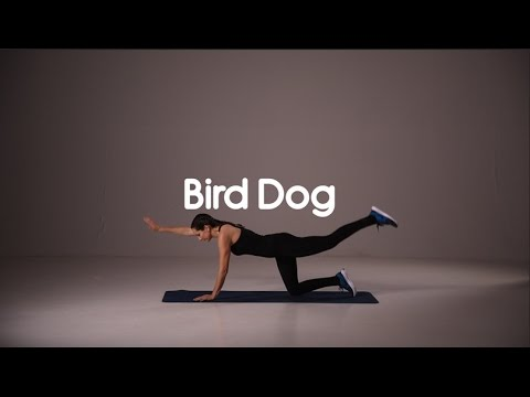 How To Do Bird Dog - HIIT Exercise - 20 Second Demo