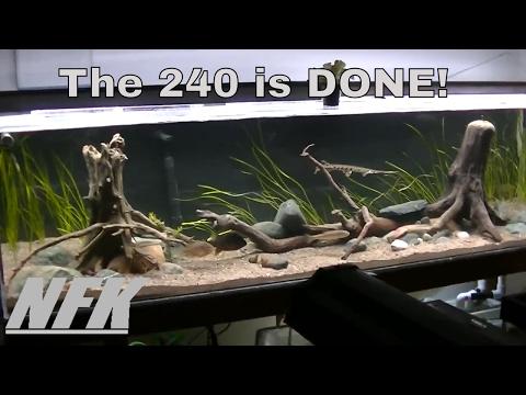 240 Gallon North American Native Aquarium