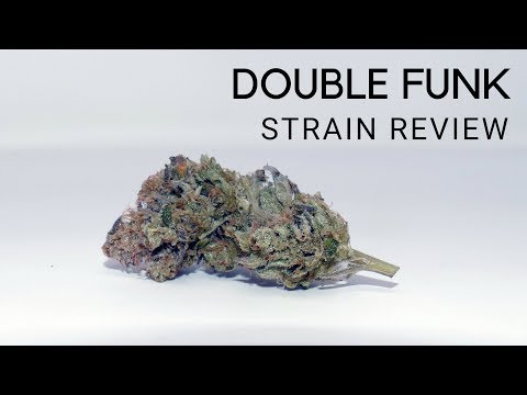 Double Funk Cannabis Strain Review & Information - ISMOKE
