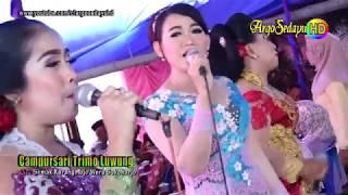 Gambar cover Campursari HD Video WIS JAMANE Trimo Luwung Weru Sukoharjo
