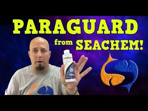 Seachem Paraguard Product Spotlight!! KGTropicals!!
