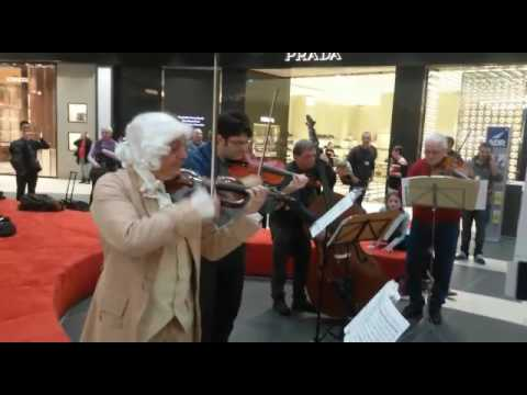 ADR: Santa Cecilia al Volo- flashmob Wolfgang Amadeus Mozart