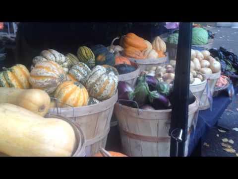 Portland Farmers' Market, 11/14/15