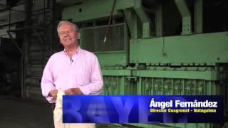 #UnaVidaMejorEs mejorar la producción de algodón