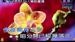 今夜擱再想你(55602)原key-Dm 音圓(導音版)