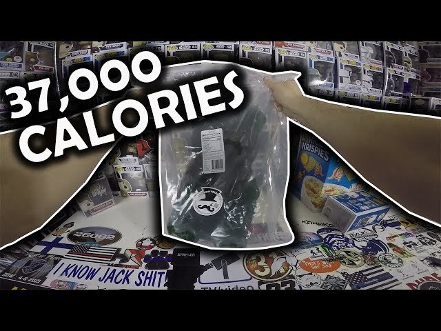 37,000 Calories IN JUST THIS!!