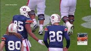 Auburn Football A-Day Highlights 2018