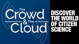 The Crowd & The Cloud preview