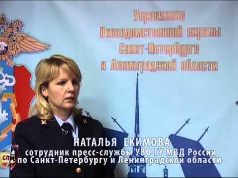 В Санкт-Петербурге задержали подозреваемых в нападении на офис частного охранного предприятия