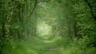 Download Air - Johann Sebastian Bach Mp3 and Videos